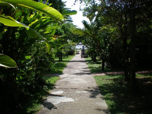 Grounds of our resort, path to the beach